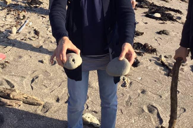 海岸で採れる石